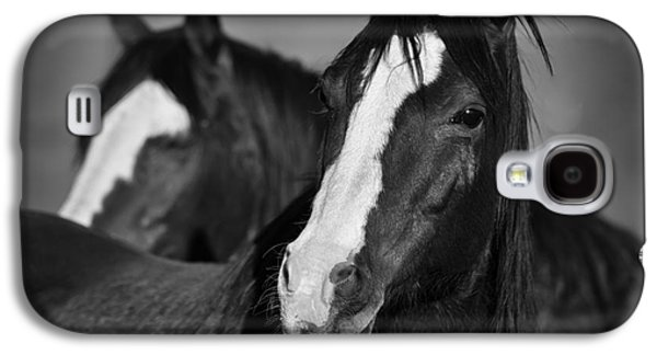 Curious Horses Galaxy S4 Case