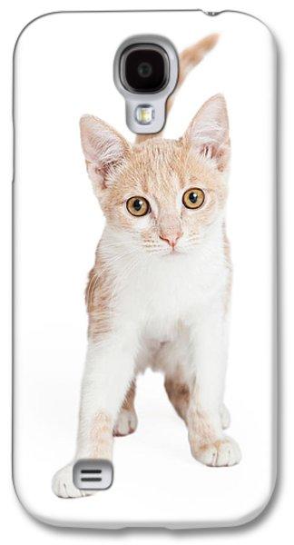 Cute Domestic Shorthair Kitten Standing  Galaxy S4 Case by Susan Schmitz