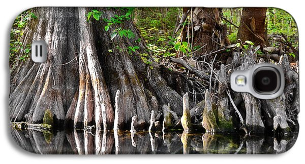 Cypress Trees - Nature's Relics Galaxy S4 Case by Christine Till