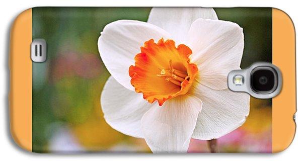 Daffodil  Galaxy S4 Case by Rona Black