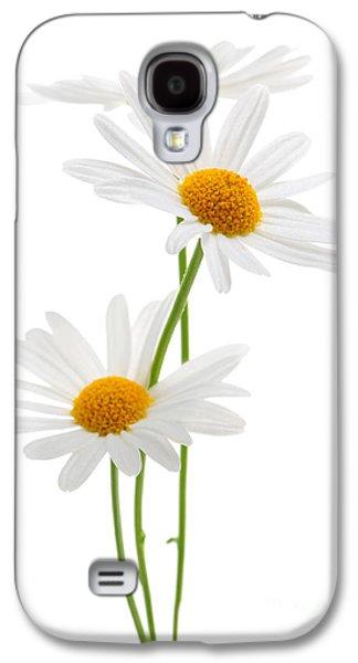 Daisies On White Background Galaxy S4 Case by Elena Elisseeva