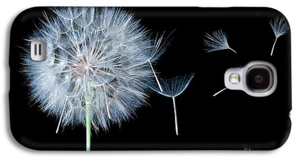 Dandelion Dreaming Galaxy S4 Case by Cindy Singleton