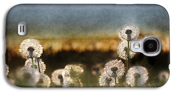 Dandelion Dusk Galaxy S4 Case by Cindy Singleton