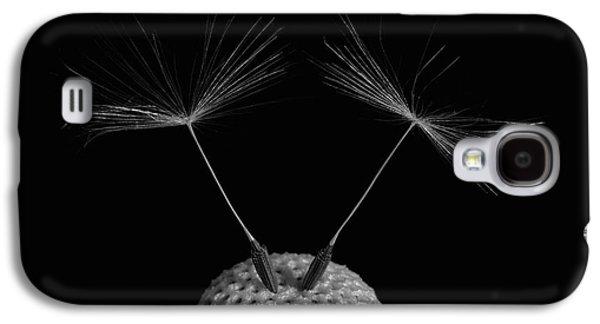 Dandelion Seeds  Waterloo, Quebec Galaxy S4 Case by David Chapman