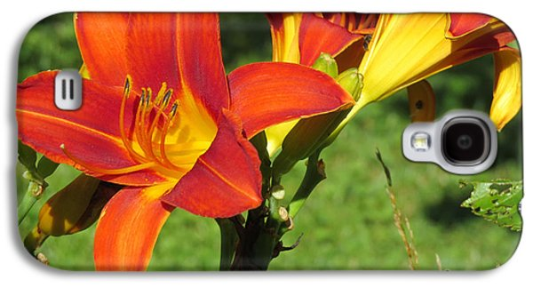 Day Lily 3 Galaxy S4 Case by Linda L Martin
