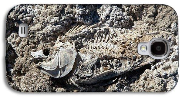 Dead Fish On Salt Flat Galaxy S4 Case by Jim West
