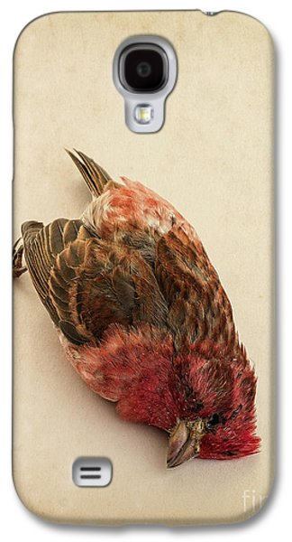 Crossbill Galaxy S4 Case - Death Of The Innocent by Edward Fielding