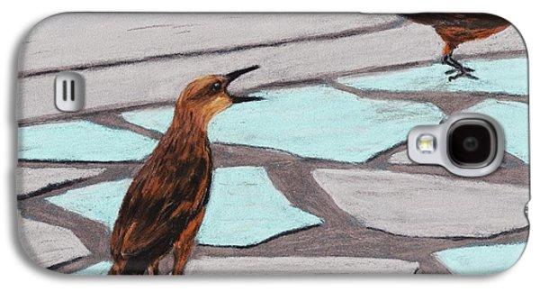 Death Valley Birds Galaxy S4 Case by Anastasiya Malakhova