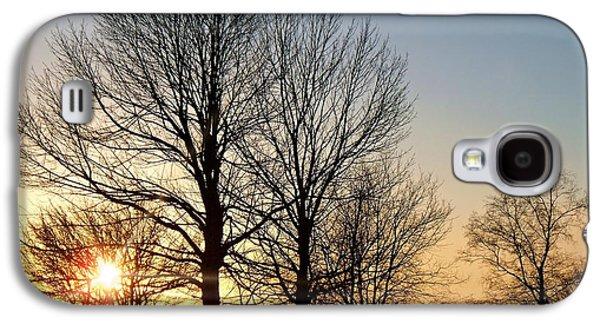 December Sundown Through The Trees Galaxy S4 Case by Joy Nichols