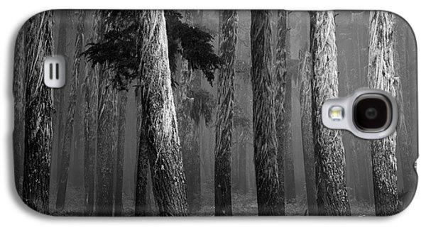 Deep Forest Galaxy S4 Case