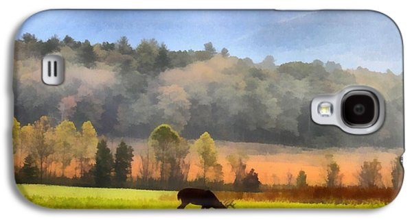 Deer In Cades Cove Smoky Mountains National Park Galaxy S4 Case