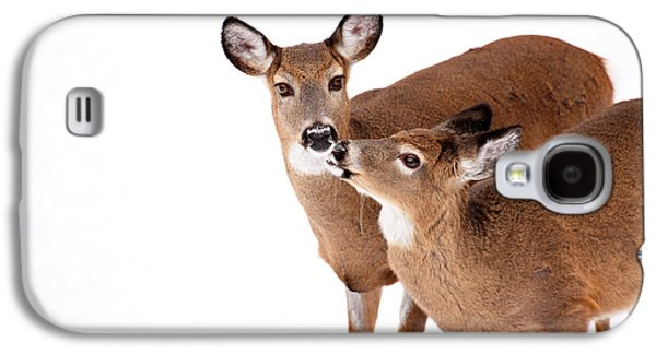 Deer Kisses Galaxy S4 Case