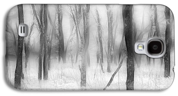 Defenders Of The Forest II Galaxy S4 Case by Dan Carmichael