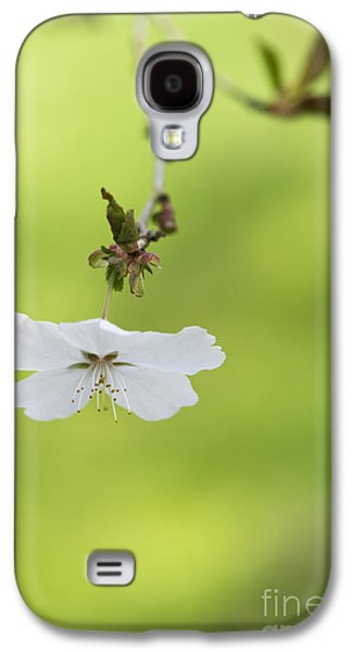 Delicate  Galaxy S4 Case by Tim Gainey