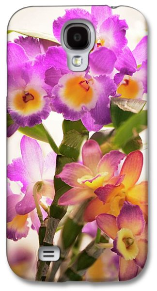 Dendrobium Nobile Orchid Galaxy S4 Case