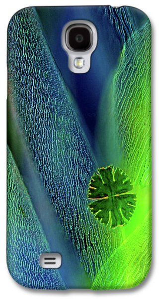 Desmid On Sphagnum Moss Galaxy S4 Case