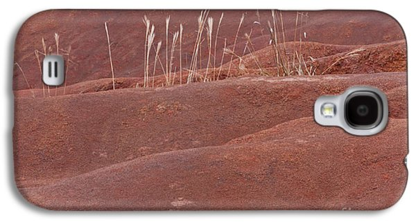Determined Galaxy S4 Case by F Innes - Finesse Fine Art