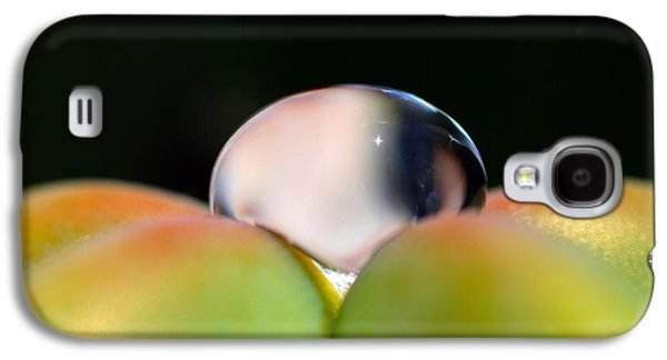 Dew On Cactus Galaxy S4 Case by Joe Schofield