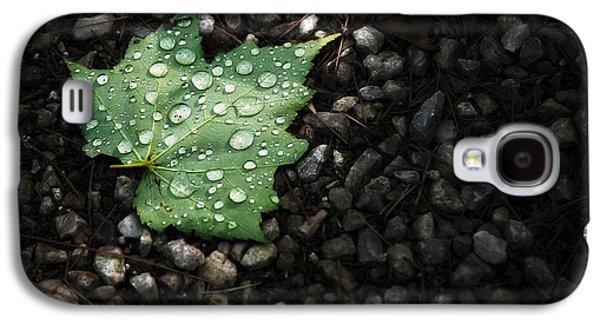 Dew On Leaf Galaxy S4 Case by Scott Norris
