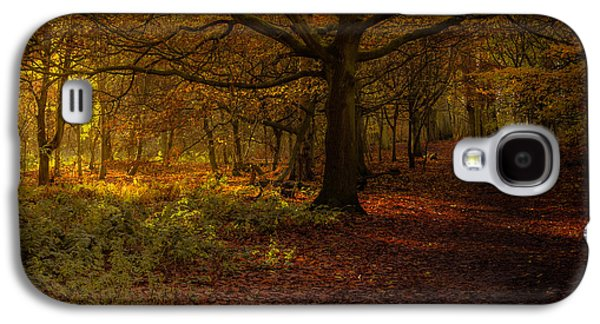 Did Someone Say Autumn? Galaxy S4 Case by Chris Fletcher
