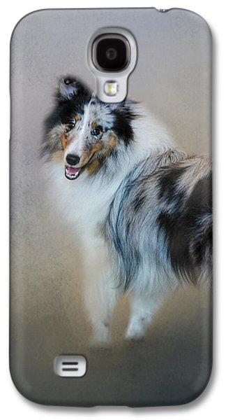 Did You Call Me - Blue Merle Shetland Sheepdog Galaxy S4 Case