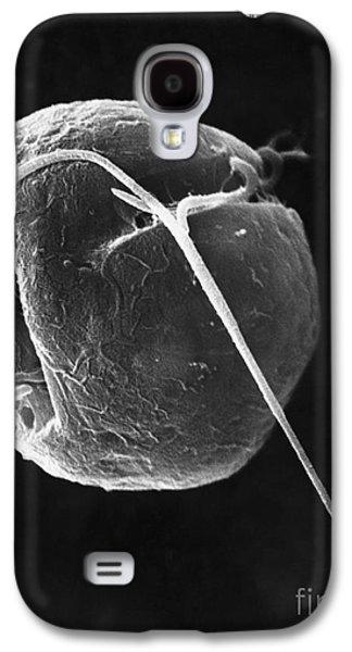 Dinoflagellate Galaxy S4 Case