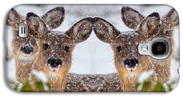 Doe You See Me Galaxy S4 Case by Betsy Knapp