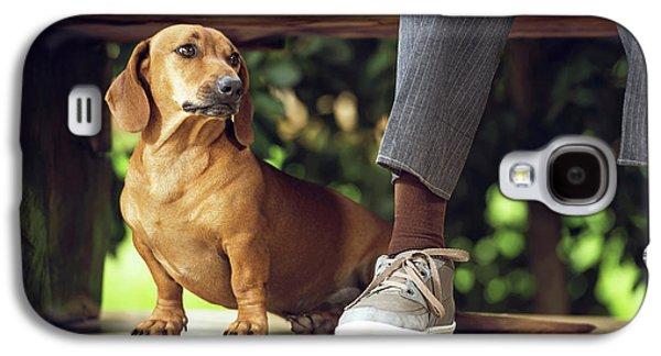 Dog Sitting On Floor Under Table Galaxy S4 Case