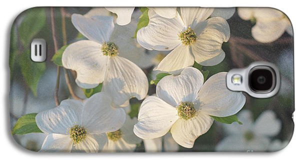 Dogwood Blossoms Galaxy S4 Case