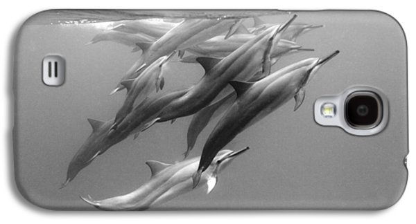 Dolphin Pod Galaxy S4 Case by Sean Davey