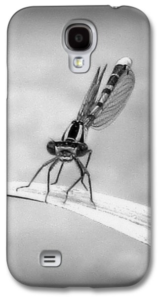 Galaxy S4 Case featuring the photograph Donna The Damselfly by Karen Shackles