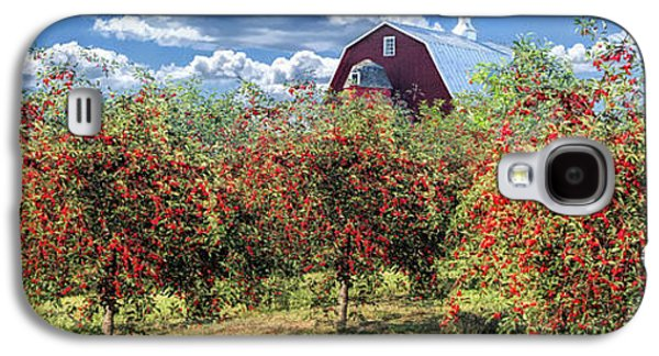 Door County Cherry Harvest And Red Barn Panorama Galaxy S4 Case by Christopher Arndt