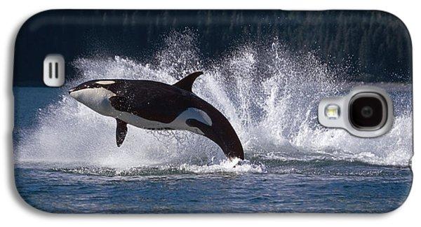 Double Breaching Orcas Bainbridge Galaxy S4 Case
