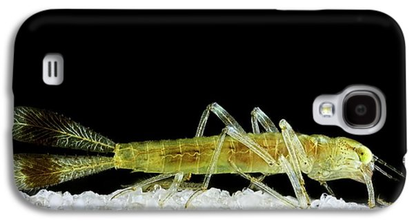 Dragonfly Larva Tail Galaxy S4 Case