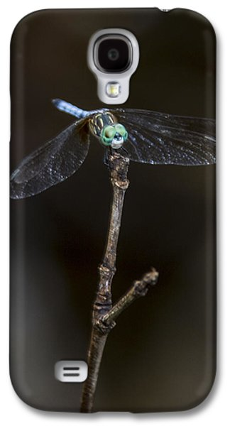 Dragonfly On Branch Galaxy S4 Case