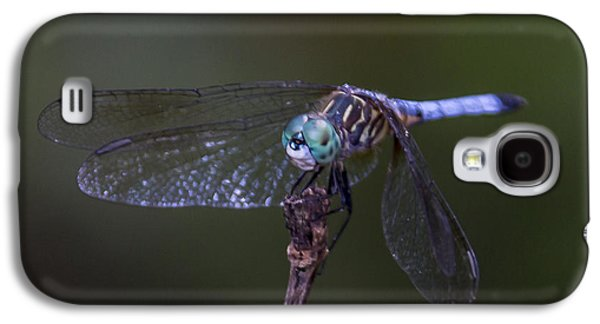 Dragonfly Galaxy S4 Case