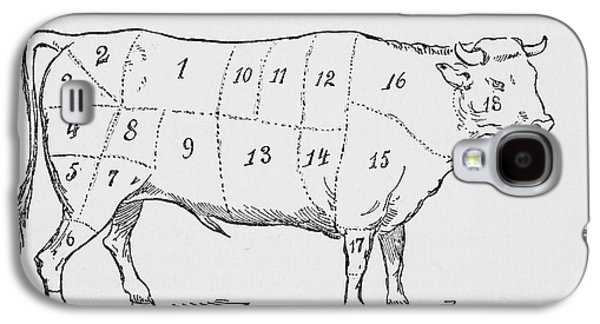 Drawing Of A Bullock Marked To Show Eighteen Different Cuts Of Meat Galaxy S4 Case