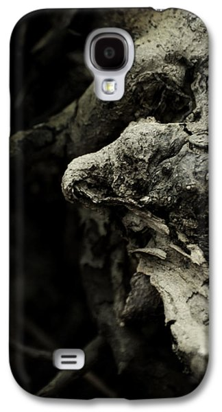 Dream Chanter Galaxy S4 Case by Rebecca Sherman