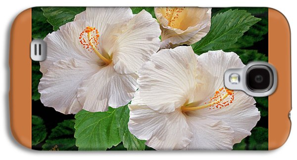 Dreamy Blooms - White Hibiscus Galaxy S4 Case by Ben and Raisa Gertsberg
