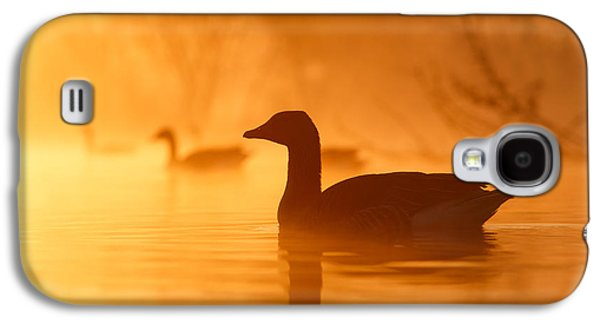 Geese Galaxy S4 Case - Early Morning Mood by Roeselien Raimond