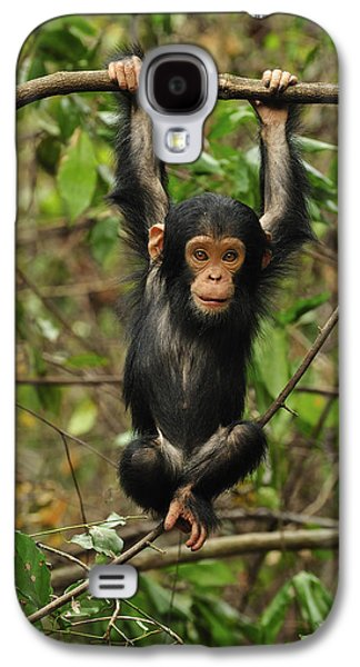Eastern Chimpanzee Baby Hanging Galaxy S4 Case by Thomas Marent