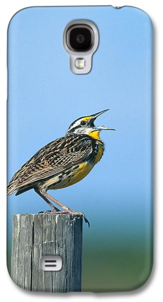 Eastern Meadowlark Galaxy S4 Case by Paul J. Fusco