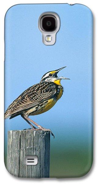 Eastern Meadowlark Galaxy S4 Case