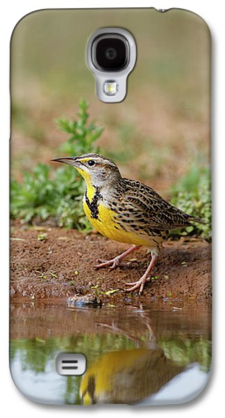 Meadowlark Galaxy S4 Case - Eastern Meadowlark (sturnella Magna by Larry Ditto