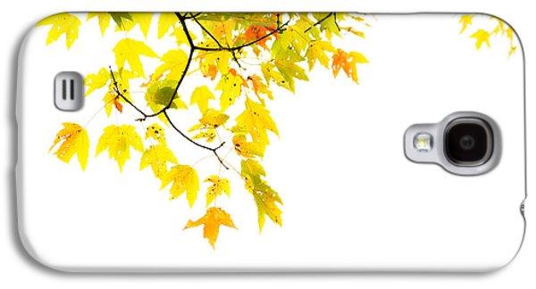 Edge Of The Season Galaxy S4 Case by Karol Livote