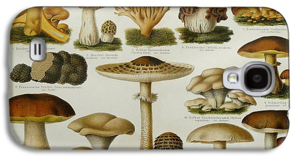 Edible Mushrooms Galaxy S4 Case by Science Source