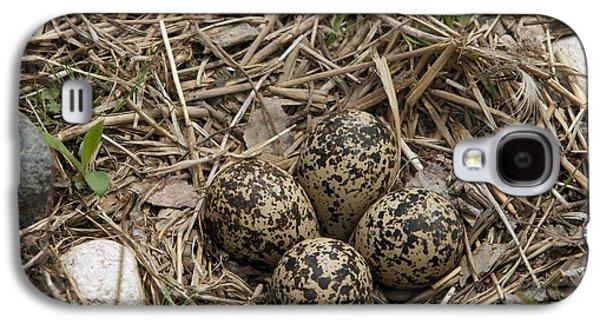 Killdeer Galaxy S4 Case - Eggs In Killdeer Nest by Linda Freshwaters Arndt