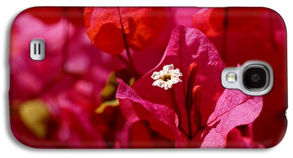 Electric Pink Bougainvillea Galaxy S4 Case by Rona Black