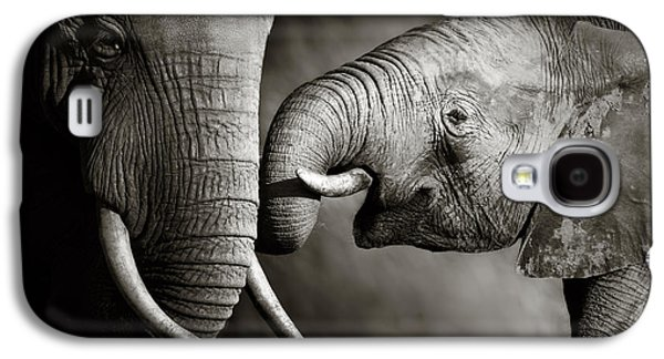 Elephant Affection Galaxy S4 Case by Johan Swanepoel