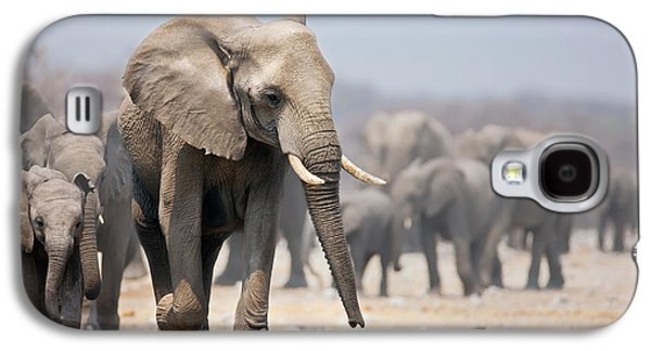 Elephant Feet Galaxy S4 Case by Johan Swanepoel
